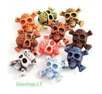Kaukolė, įvarių spalvų