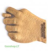 Špyga Taukuota - geomoneta, bronzos spalvos