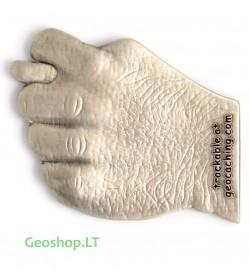Špyga Taukuota - geomoneta, sidabro spalvos